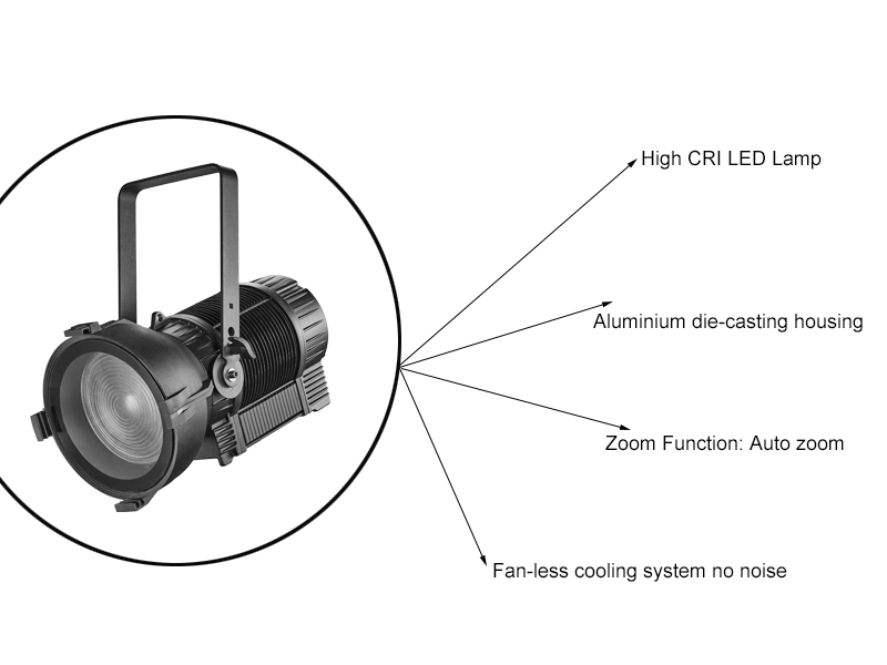 Outdoor IP65 LED Fresnel Manufacturer CSL-F300IP65
